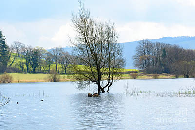 Photograph - Blagdon Lake by Colin Rayner