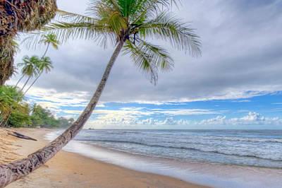 Photograph - Blanchisseuse Beach by Nadia Sanowar