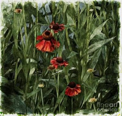 Photograph - Blanket Flowers by Marcia Lee Jones