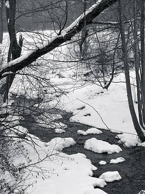 Photograph - Blanket Of Winter by Debra     Vatalaro