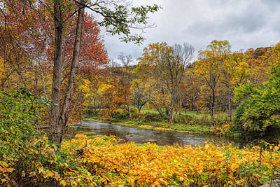 Photograph - Blanket Of Yellow by John M Bailey