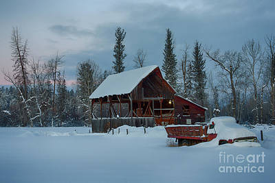 Photograph - Blanketed by Idaho Scenic Images Linda Lantzy