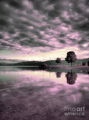 Okanagan Lake Photograph - Blanketed by Tara Turner