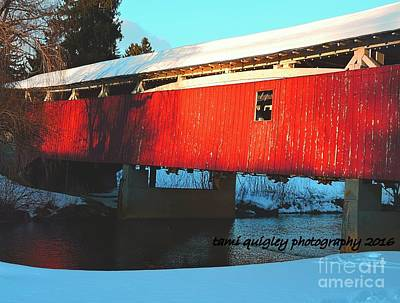 Photograph - Blanketing Bogert's Bridge by Tami Quigley