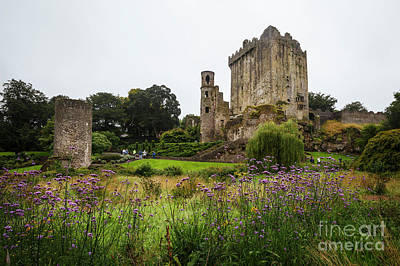 Photograph - Blarney Castle by Dennis Hedberg