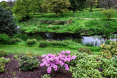 Blarney Garden - Blarney Ireland Art Print