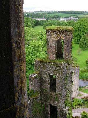 Photograph - Blarney by Richard Deurer