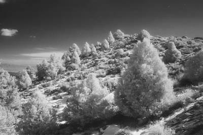 Bruce Wayne Photograph - Blazing Hillside by Bruce Wayne