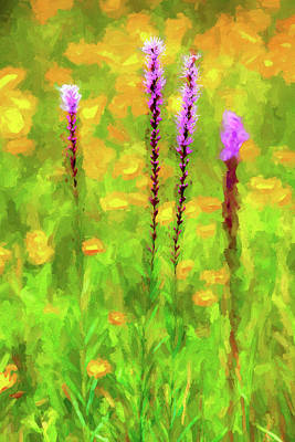 Painting - Blazing Star In The Blue Ridge Ap by Dan Carmichael