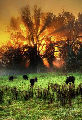 Photograph - Blazing Sunrise Over A Farm Pasture Vertical Ap by Dan Carmichael