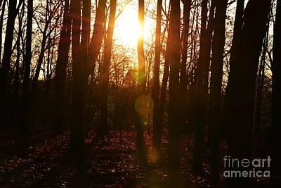 Photograph - Blazing Sunset by Amanda Kessel