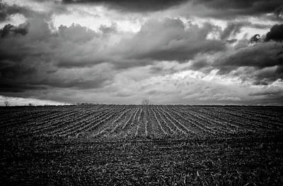 Photograph - Bleak by Marvin Borst