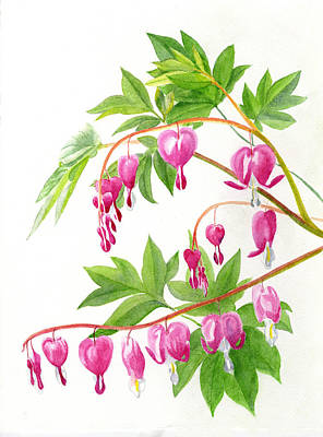Pink Flower Painting - Bleeding Hearts #1 by Sharon Freeman