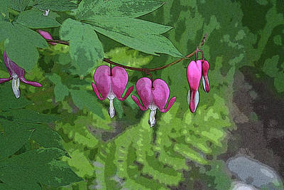 Bleeding Hearts 2 Art Print