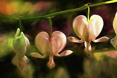 Painting - Bleeding Hearts In My Secret Garden by Peggy Collins