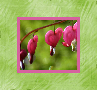 Bleeding Hearts Art Print by Lori Seaman