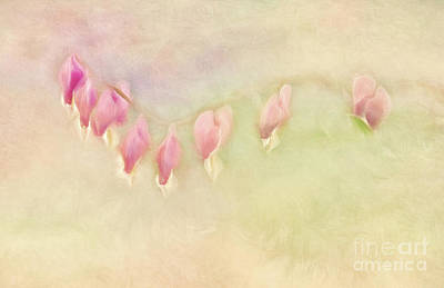 Photograph - Bleeding Hearts Watercolor by Pam  Holdsworth