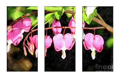 Digital Art - Bleeding Heart Triptych by Art MacKay