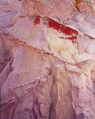 Photograph - Bleeding Rock-v by Tom Daniel