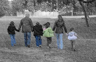 Photograph - Blended Family   by Dyle Warren