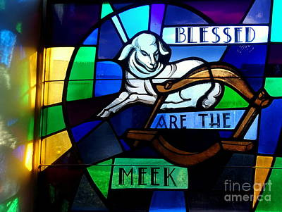 Photograph - Blessed Are The Meek by Ed Weidman