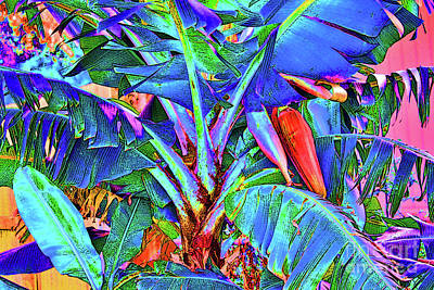 Photograph - Bleu Banana by Keri West