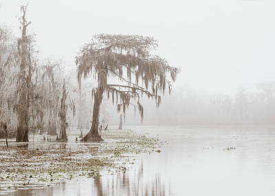 Photograph - Blind River Fog by Andy Crawford