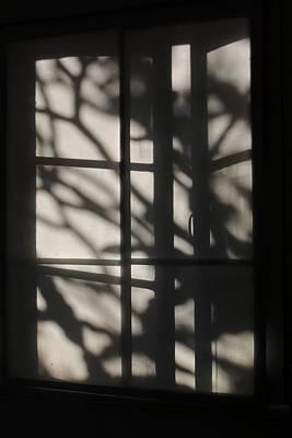 Photograph - Blind Shadows by Denise Clark