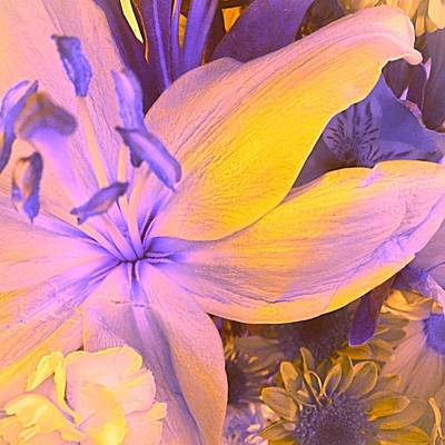 Photograph - Bliss Flowers Everyday  by Ellen Levinson