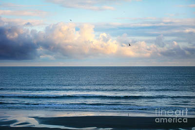 Photograph - Blissful Blues by Kelly Nowak