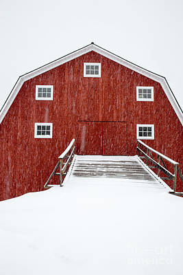 Red Barns Photograph - Blizzard At The Old Cow Barn by Edward Fielding