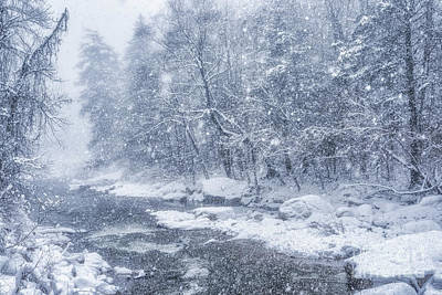 Photograph - Blizzard Conditions On Williams River by Thomas R Fletcher