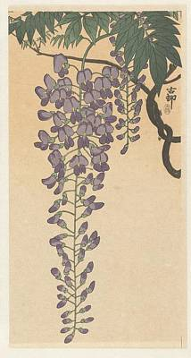Japanese Woodblocks Painting - Bloeiende Wisteria by Eastern Accents