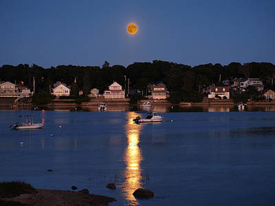 Photograph - Blood Moon by Bruce Gannon