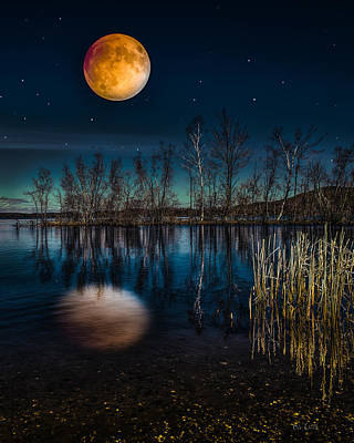 Photograph - Blood Moon Eclipse by Bob Orsillo