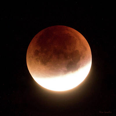 Photograph - Blood Moon Eclipse by Wim Lanclus