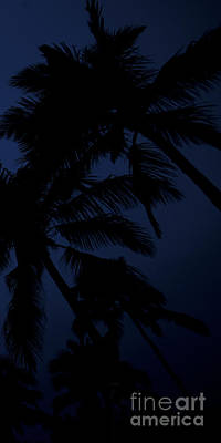 Nightcap Photograph - Blood Moon In Hawaii  - Triptych   Part 3 Of 3 by Sean Davey