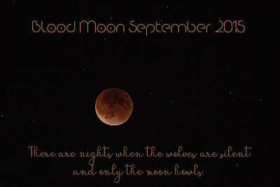 Photograph - Blood Moon by Janice Bennett