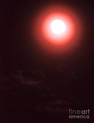 Photograph - Blood Moon by Jesse Ciazza