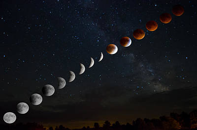 Photograph - Blood Moon Lunar Eclipse by Crystal Wightman