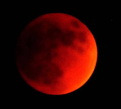 Photograph - Blood Moon by Maria Reverberi