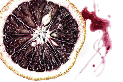 Blood Orange Art Print by Masako Metz