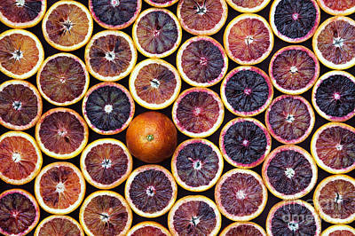 Blood Oranges Art Print by Tim Gainey