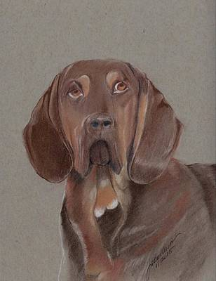Pastel - Bloodhound by Joan Mansson