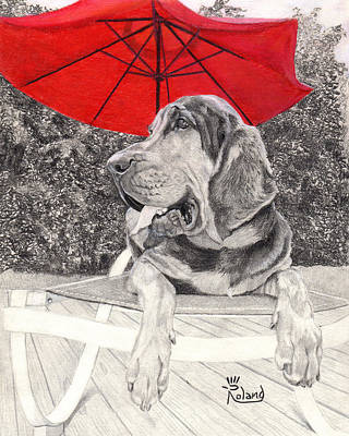 Dog Under Chair Drawing - Bloodhound Under Umbrella by Tracy Dupuis Roland