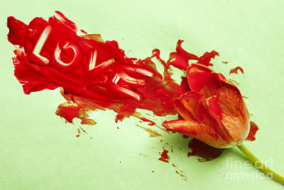 Photograph - Bloody Love by Igor Kislev