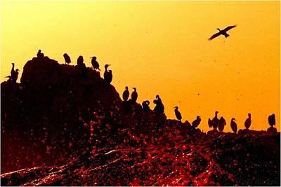 Bloody Sunset At Planet Kormoran Original