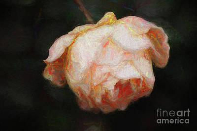 Digital Art - Bloom by Helen White