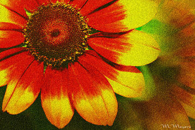Bloom Art Print by Melisa Meyers