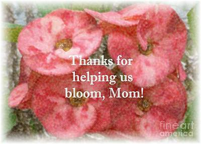 Photograph - Bloom Mothers Day Card by Barbie Corbett-Newmin